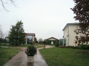 Mattino uggioso a Villa Abbondanzi.